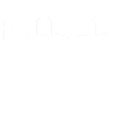 Project 3810